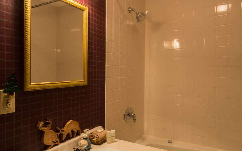 The private bathroom in the Northwoods suite includes a standard size shower and whirlpool bath.