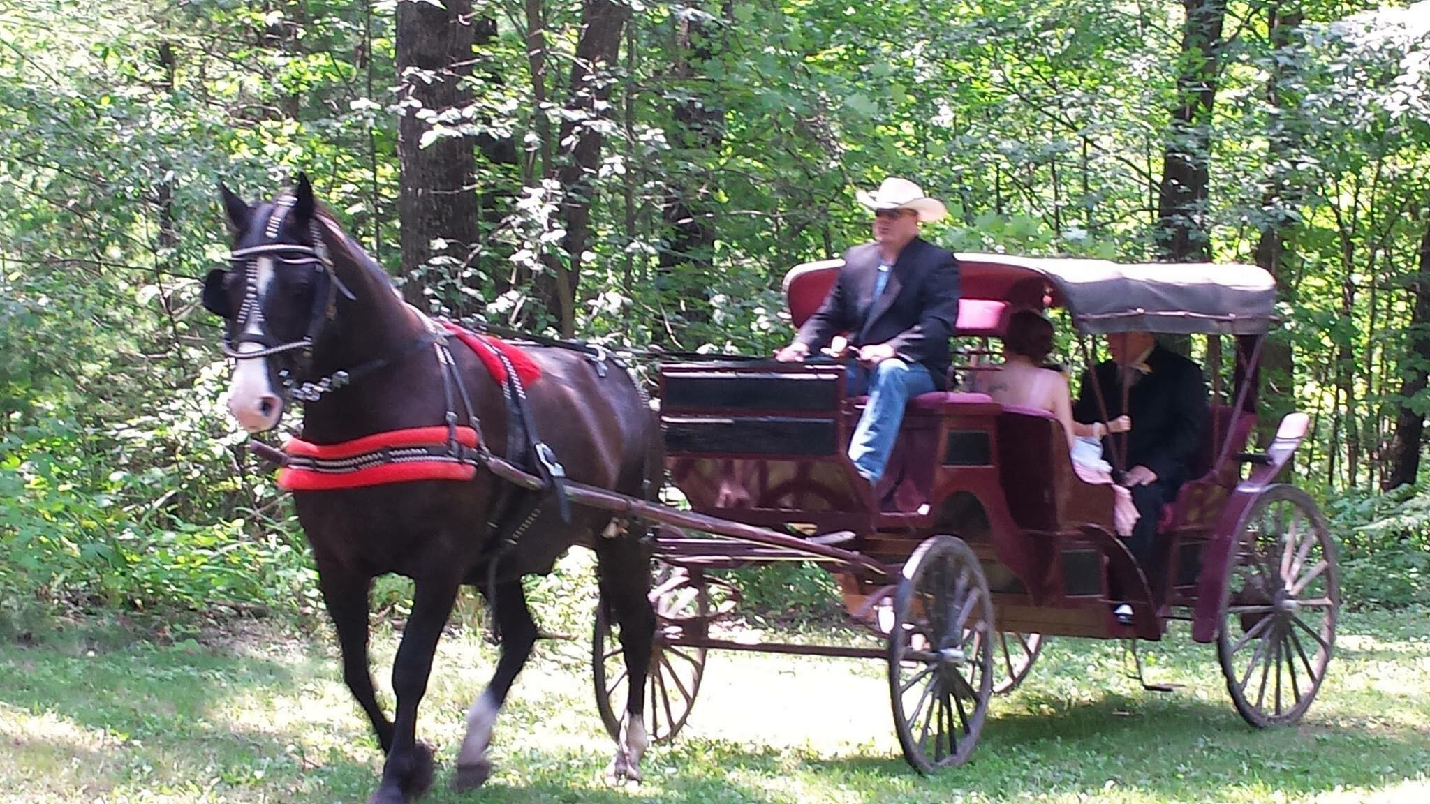Cabin Ridge Rides is just 20 minutes from the Inn, enjoy a carriage ride in the summer or fall.